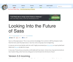 looking-into-the-future-of-sass-1024x768