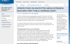 perspectives-on-encrypted-media-extension-reaching-first-public-working-draft-|-w3c-blog-1024x768